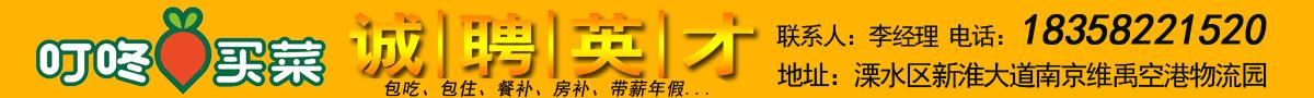 叮咚买菜(南京)