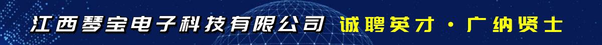 江西琴宝电子科技有限公司