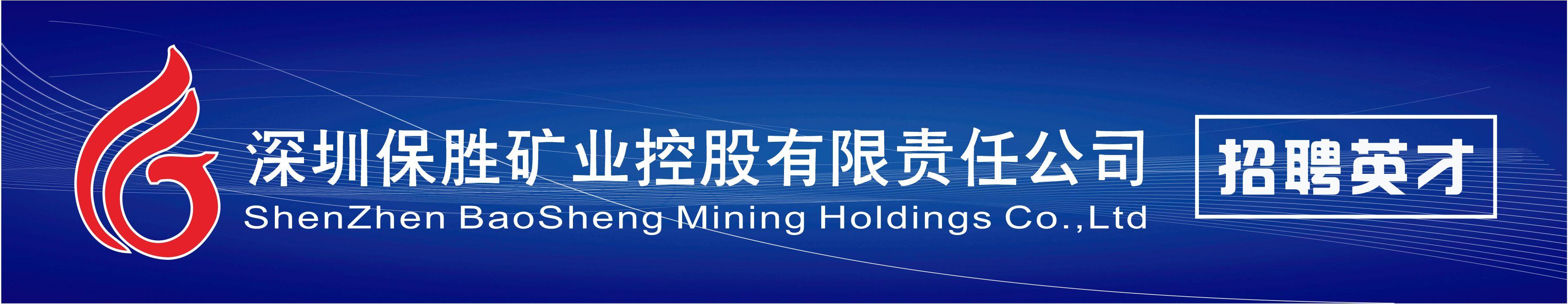 深圳保胜矿业控股有限责任公司