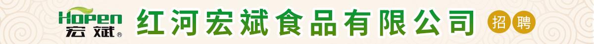 红河宏斌食品有限公司