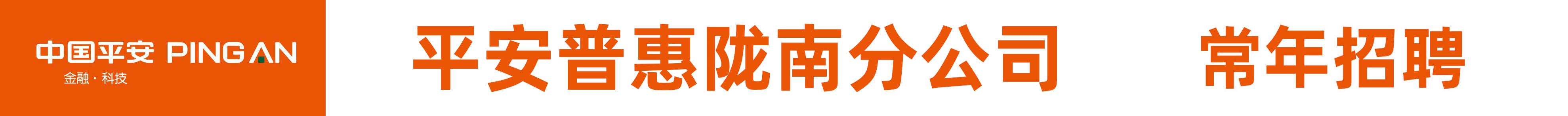 平安普惠陇南分公司