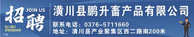 潢川县鹏升畜产品有限公司