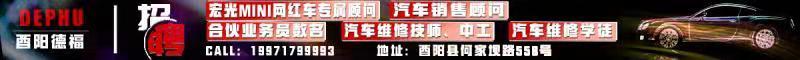 酉阳县德福智汽车销售服务有限公司