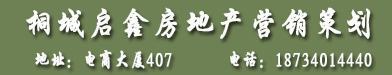 桐城启鑫房地产营销策划有限公司