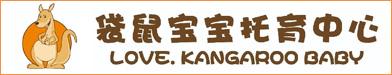 桐城袋鼠寶寶教育科技有限公司