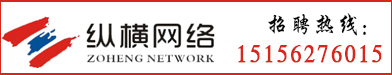 安徽縱橫網絡有限公司