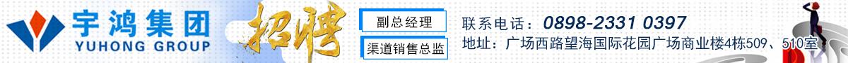 海南宇鸿投资集团有限公司