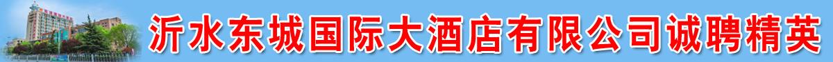 沂水东城国际大酒店有限公司