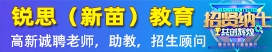 望江县新苗(锐思)教育培训学校有限公司