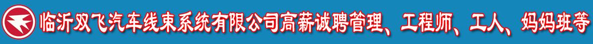 临沂双飞汽车线束系统有限公司