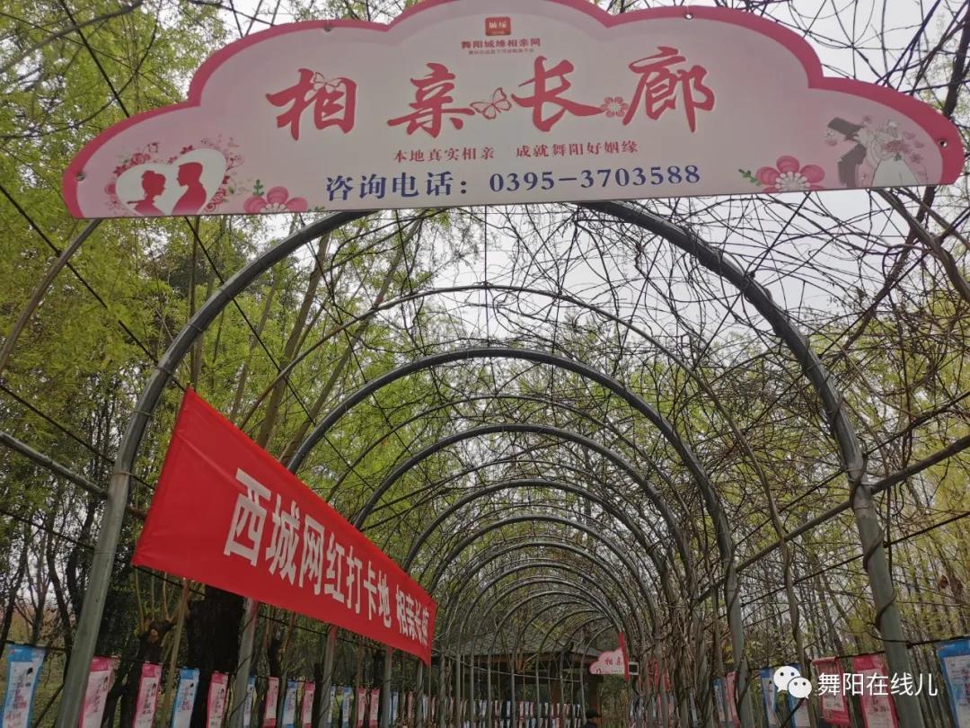河南舞阳在线城缘相亲3月线下活动来啦