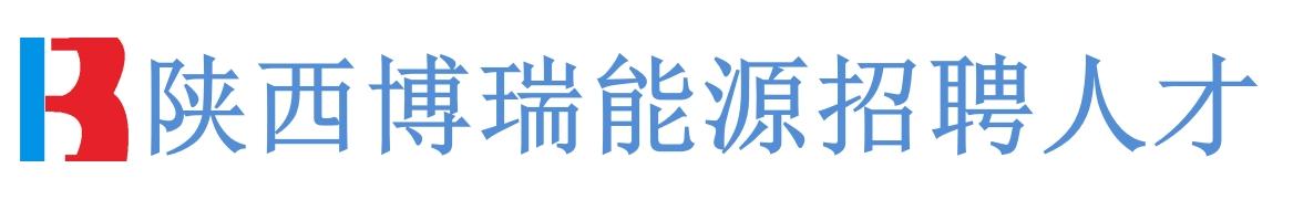 陕西博瑞能源设备有限公司