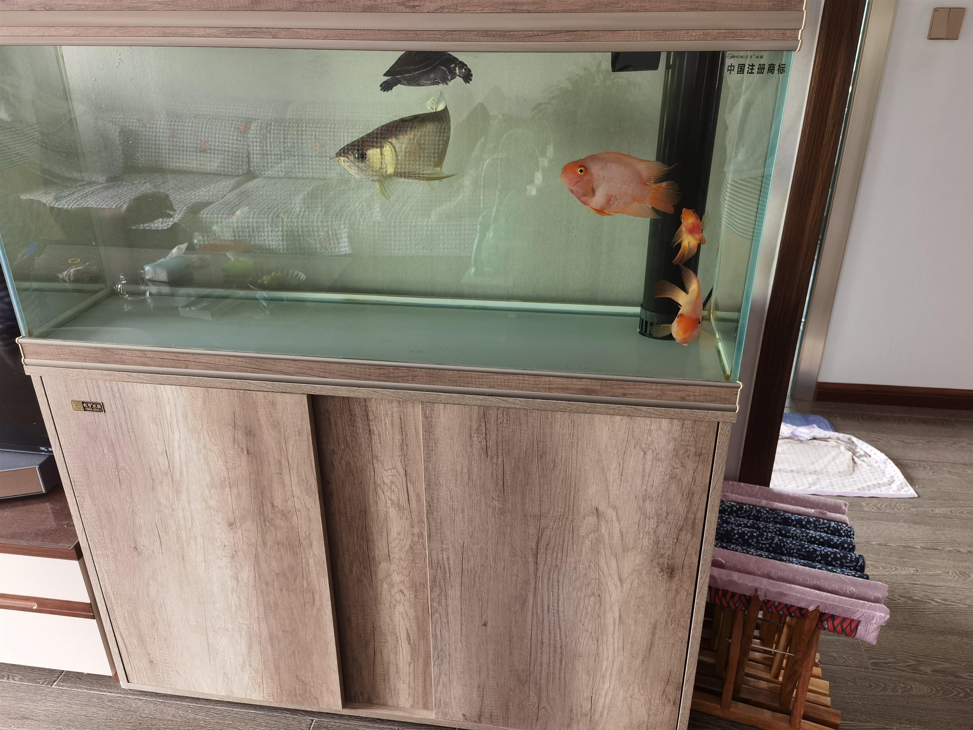 名亨水族超白玻璃鱼缸