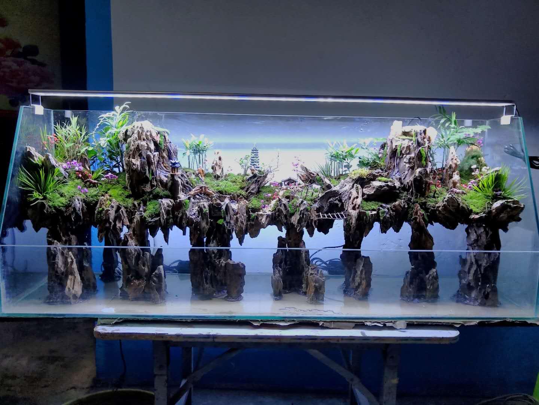 水陸缸造景山水盆景制作